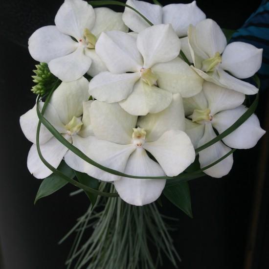Ramo de novia con phalaenopsis y tallos verdes.